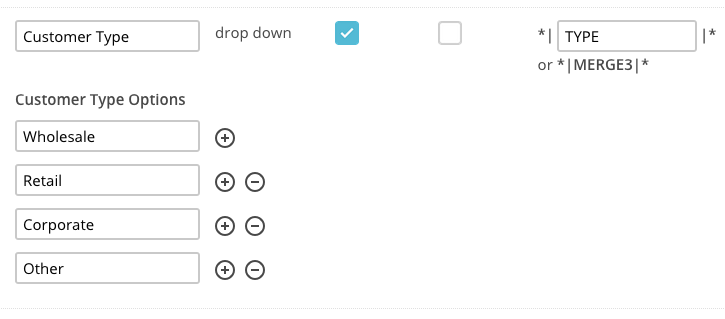 Example of a custom field in MailChimp
